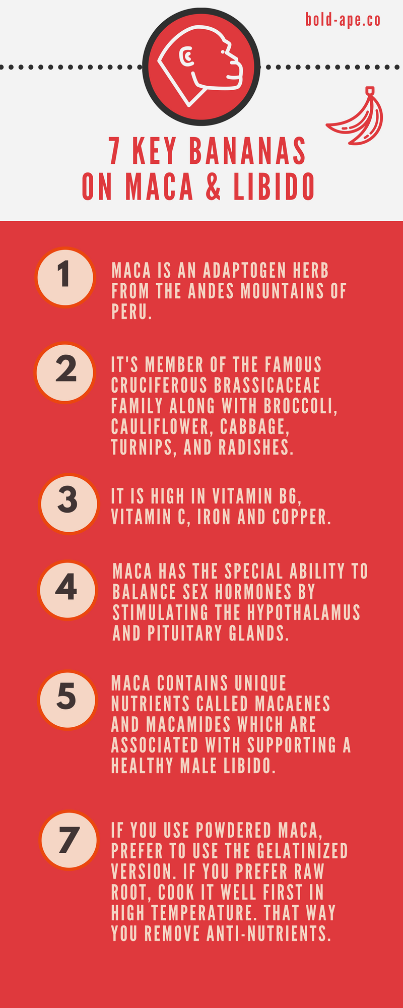 Boldape Infographic Keypoints On Incas Libido Secret